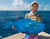 Blue Parrot Fish, considerat o delicatete in multe colturi din lume
