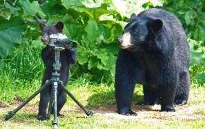Ucenicul fotografului