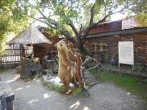 ... ursul pacalit de vulpe ...